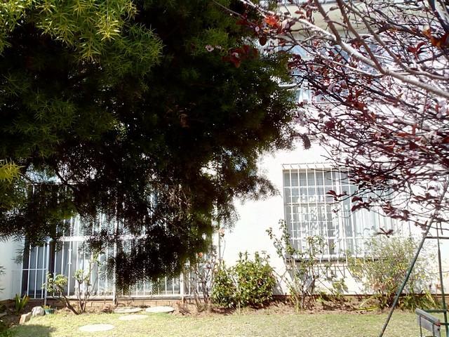 Property For Rent in Corlett Gardens, Johannesburg 14