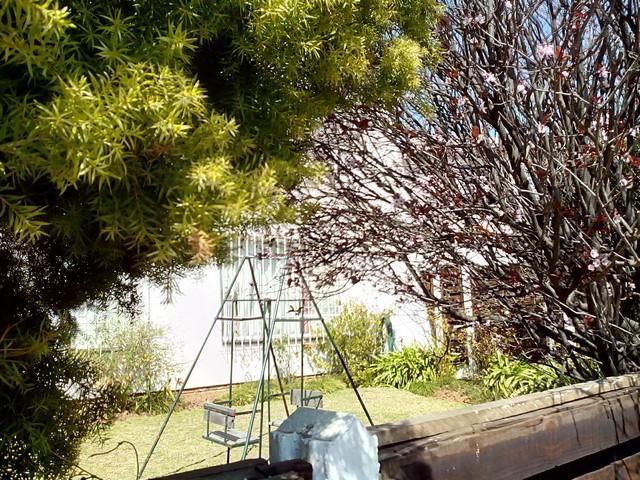 Property For Rent in Corlett Gardens, Johannesburg 15