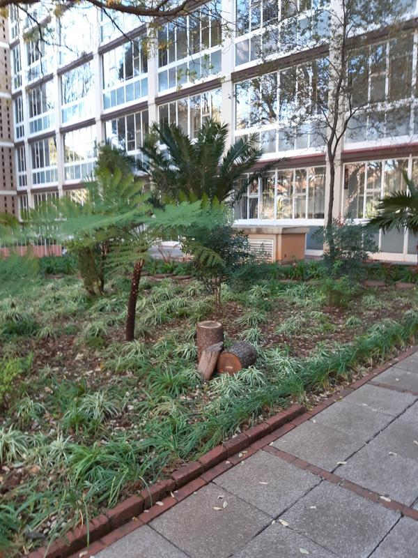 Property For Rent in Parktown, Johannesburg 13